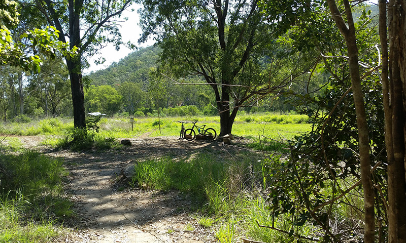 Zamia Trail hub at First Turkey, Rockhampton